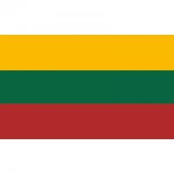 Lietuvos respublikos valstybinė vėliava SPAUSTA 1x1,7m su kišenė ir raišteliais