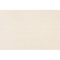 Vokai CURIOUS METALLICS, Virtual Pearl, DL, 110x220, 1 vnt