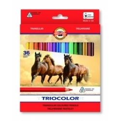 """Spalvoti pieštukai tribriauniai """"Triocolor Jumbo"""" Koh-I-Noor, 36 spalvų"""