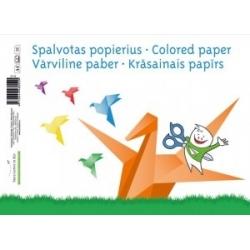 Vienpusis spalvotas popierius