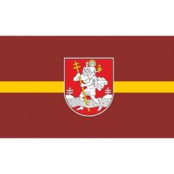 Vilniaus vėliava 1x1,7m su karabinais