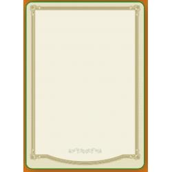 Diplominis popierius 160g Nr. 12 ''Rėmelis''