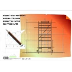 Milimetrinis popierius A4 20lapų