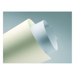 """Dekoratyvinis kartonas """"Linas"""", baltos spalvos"""