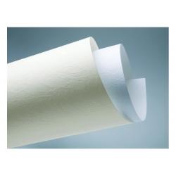 """Dekoratyvinis kartonas """"Oda"""" baltos spalvos, 1 lapas"""