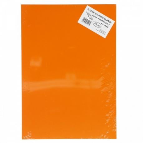 Lipnus popierius A4 PROTOS ryškių spalvų